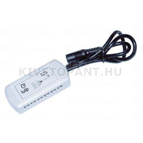 LED lámpához elosztó AMP 12 kivezetés kapcsolós lámpatestekhez